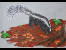 Art: Skunk Searcher by Artist Jackie K. Hixon
