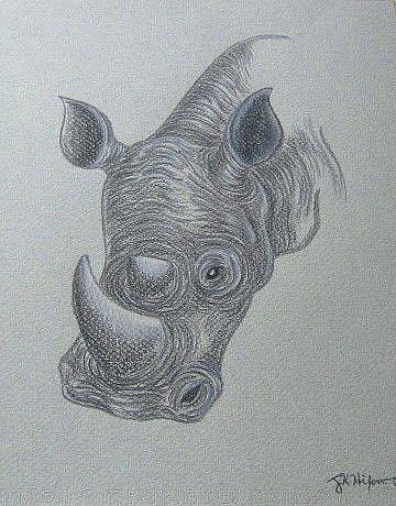 Art: Rhino Portrait by Artist Jackie K. Hixon