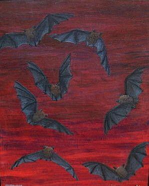 Art: Vesper Bats by Artist Jackie K. Hixon