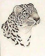 Art: Ounce Profile by Artist Jackie K. Hixon