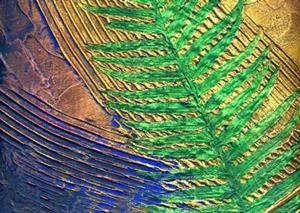 Detail Image for art Sword Fern Marine ~  From the Impressions Series