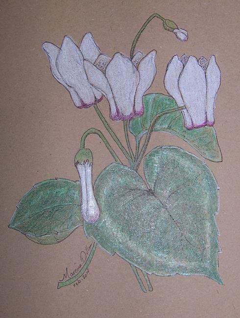 Art: Cyclamen by Artist Marcine (Marcy) Dillon