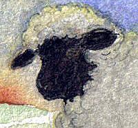 Detail Image for art Sunrise Admiration