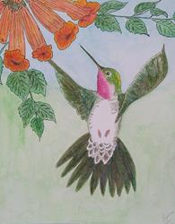 Art: Hummingbird by Artist Marcine (Marcy) Dillon