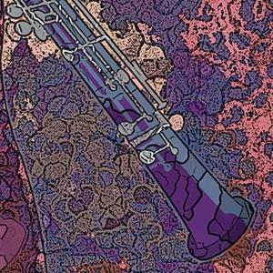 Detail Image for art Oboe Lament
