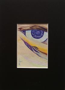 Detail Image for art Eye Scape