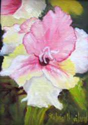 Art: Glads miniature oil framed in gold gilted frame by Artist Barbara Haviland