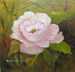 Art: Pink Rose by Artist Barbara Haviland