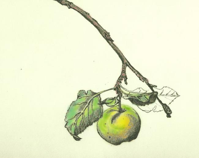 Art: Malus by Artist Caroline Lassovszky Baker