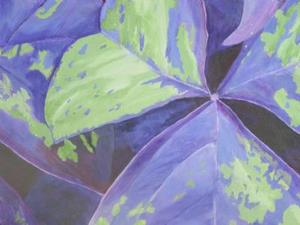 Detail Image for art Oxalis