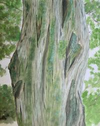 Art: Gnarled Tree II by Artist Donna Gill