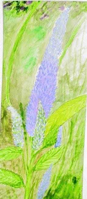 Art: Salvia by Artist Donna Gill