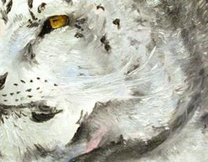 Detail Image for art   Moonlight Snow Leopard
