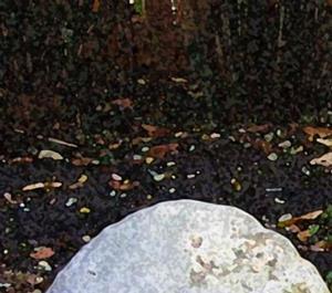 Detail Image for art Pumpkin Family