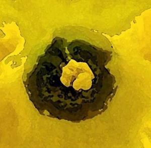 Detail Image for art Yellow Burst