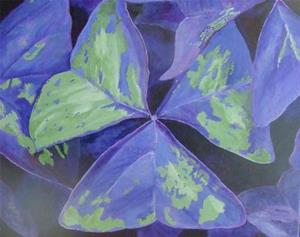 Detail Image for art Oxalis Revisited