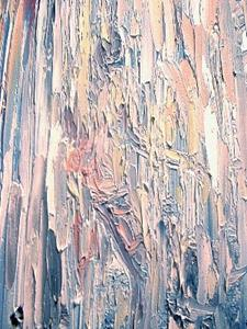 Detail Image for art Silent Lucidity