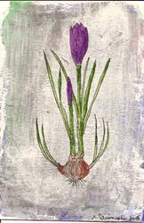 Art: Crocus Vernus original OSWOA painting by Artist Nancy Denommee