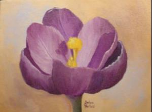 Detail Image for art Purple Crocus