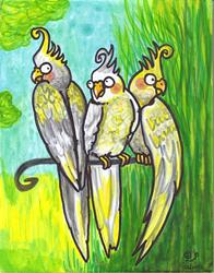 Art: Cockatiels by Artist Emily J White