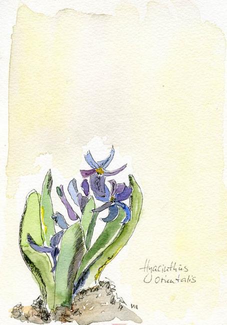 Art: Hyacinthus orientalis by Artist Gabriele Maurus