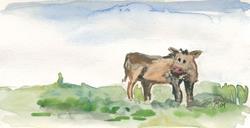 Art: Grassland Cow by Artist Gabriele M.