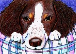 Art: KiniArt Portrait - Springer Spaniel mix by Artist KiniArt