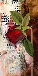 Art: As the Rose Weeps by Artist Alma Lee
