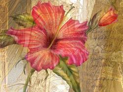 Art: Golden Hibiscus by Artist Alma Lee