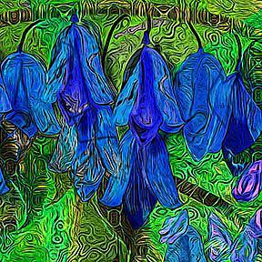 Detail Image for art Blue Bells Beckon