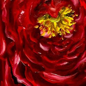 Detail Image for art Scandulous Ranunculus