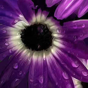 Detail Image for art Purple Petals with Bee
