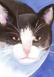 Art: Sweet Little Alice by Artist Deborah Sprague