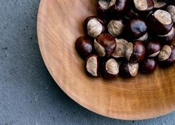 Art: Chestnuts on Maple by Artist Gabriele M.
