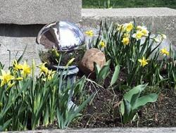 Art: Spring Daffodils by Artist Jenny Doss