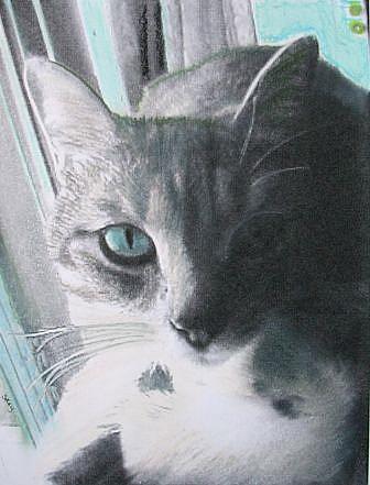 Art: Psycho  by Artist Sherry Key