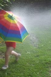 Art: Rainstreaker by Artist Amie R Gillingham