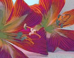 Art: Lilies with a little Help by Artist Virginia Ann Zuelsdorf