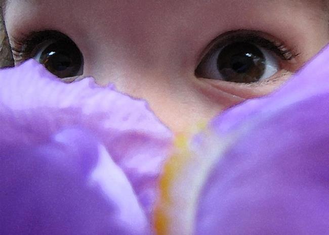 Art: Irises by Artist Carissa M Martos