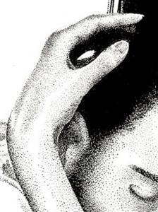 Detail Image for art Rose of Sharon