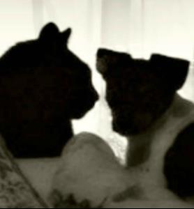 Detail Image for art Socialization Silhouette