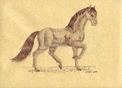 Art: Sable Stallion by Artist Jackie K. Hixon