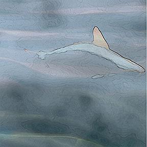 Detail Image for art I'm Sailing Away