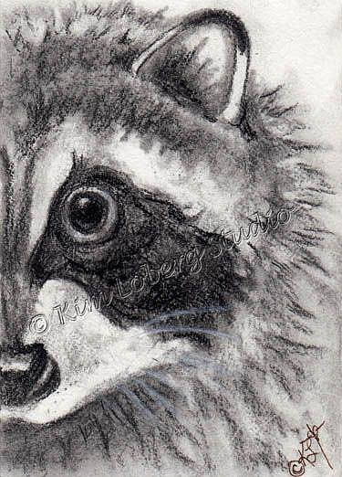 Art: Charcoal Raccoon by Artist Kim Loberg