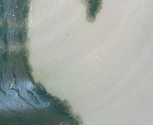 Detail Image for art IRIS SHARDS