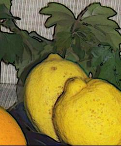Detail Image for art STRIPES & CITRUS