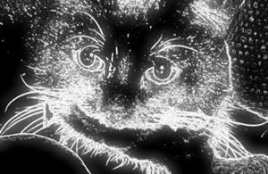 Detail Image for art SOUR PUSS