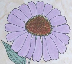 Detail Image for art ECHINACEA PURPUREA