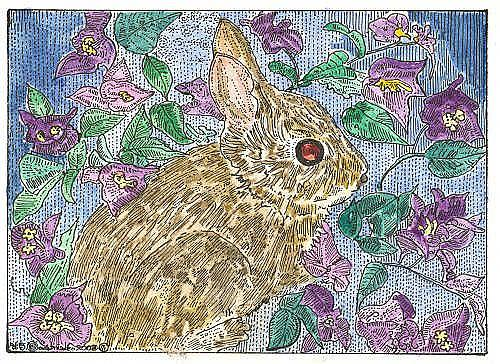 Art: BUNNY IN THE BOUGAINVILLEA by Artist Theodora Demetriades