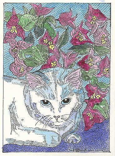 Art: Kitty and Bougainvillea by Artist Theodora Demetriades